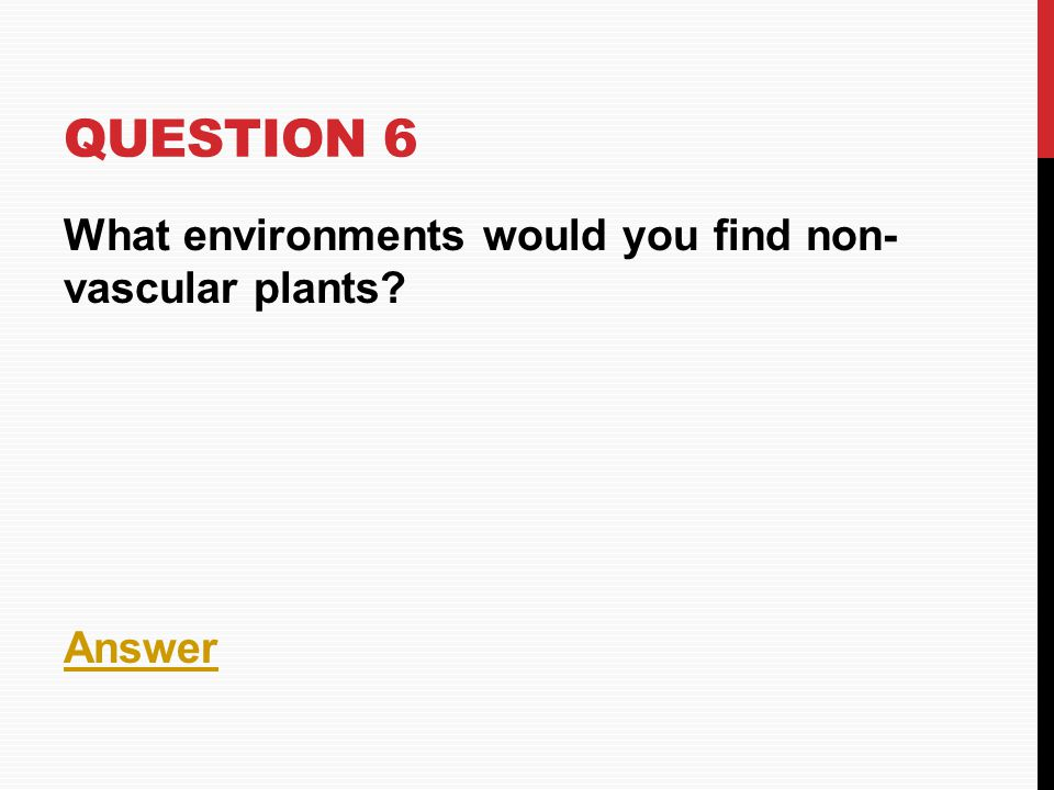 Question 6 What environments would you find non- vascular plants