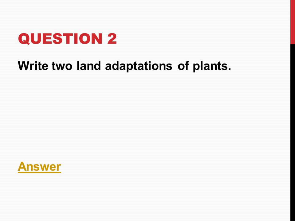 QUESTION 2 Write two land adaptations of plants. Answer
