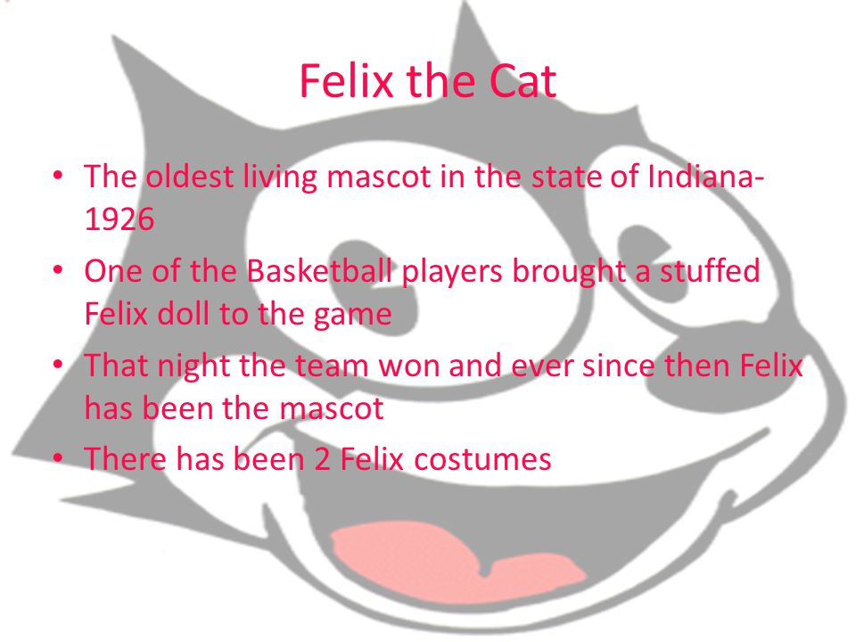 Felix the Cat The oldest living mascot in the state of Indiana-1926