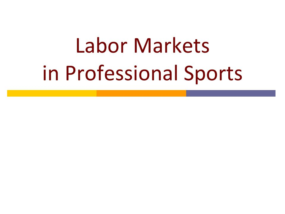 Labor Markets in Professional Sports
