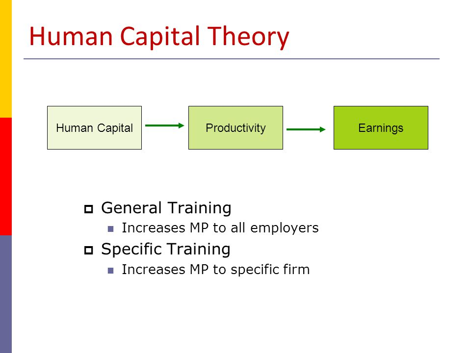 Human Capital Theory General Training Specific Training