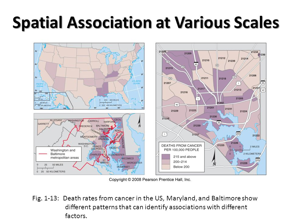 Spatial Association at Various Scales