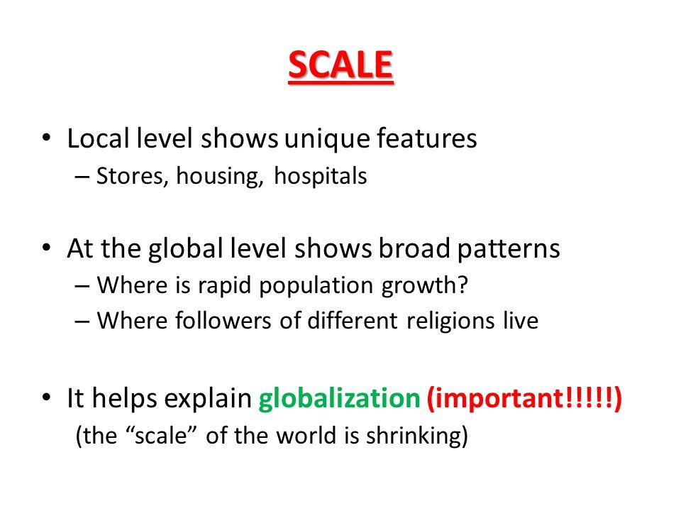 SCALE Local level shows unique features