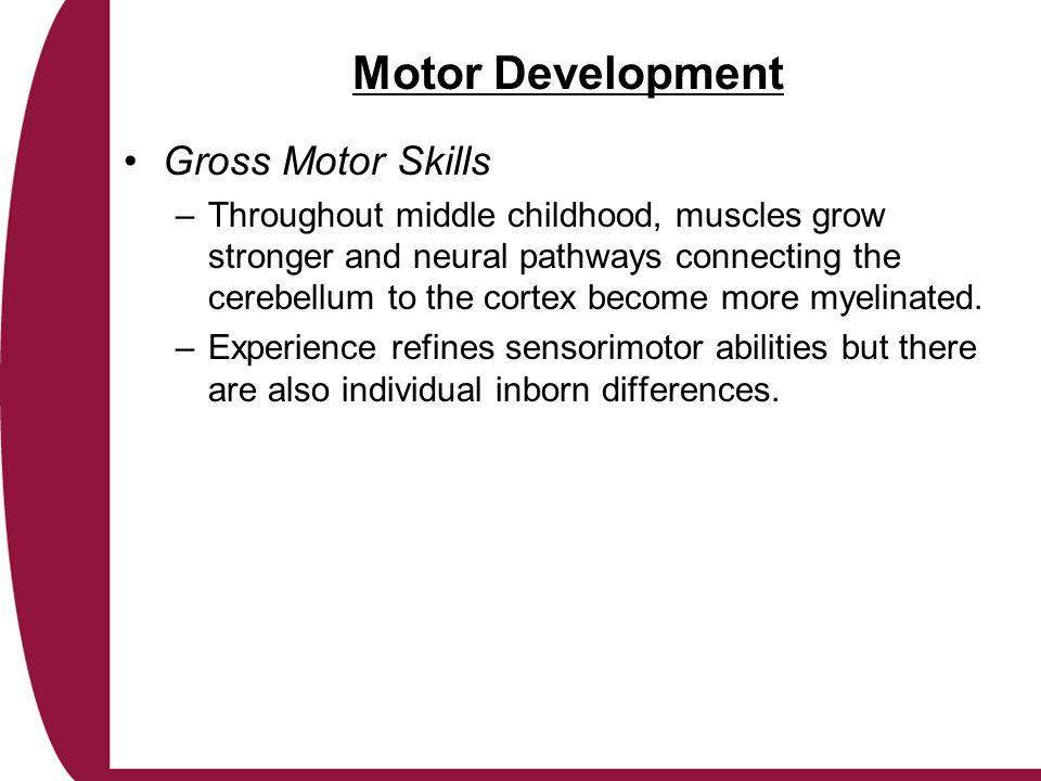 Motor Development Gross Motor Skills