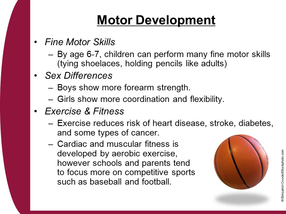 Motor Development Fine Motor Skills Sex Differences Exercise & Fitness