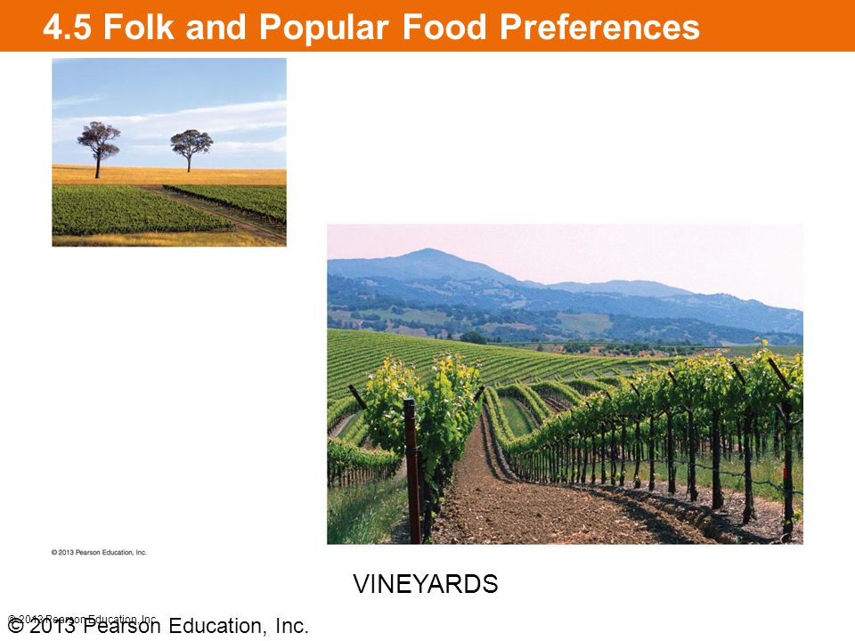 4.5 Folk and Popular Food Preferences