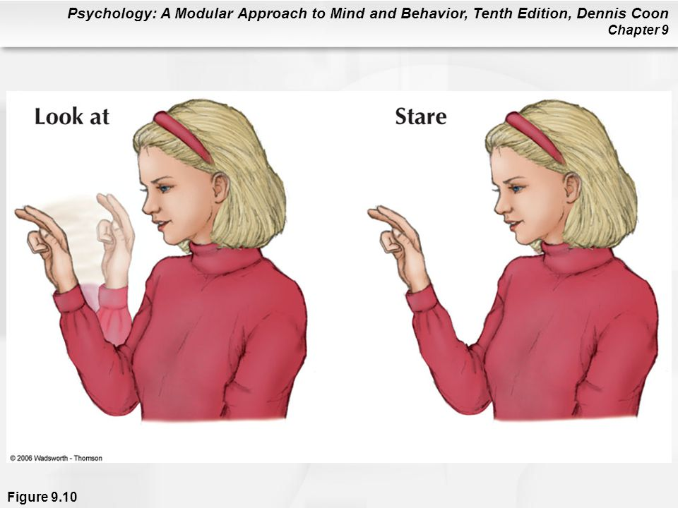 Figure 9.10 ASL has only 3,000 root signs, compared with roughly 600,000 words in English. However, variations in signs make ASL a highly expressive language. For example, the sign LOOK-AT can be varied in ways to make it mean look at me, look at her, look at each, stare at, gaze, watch, look for a long time, look at again and again, reminisce, sightsee, look forward to, predict, anticipate, browse, and many more variations.