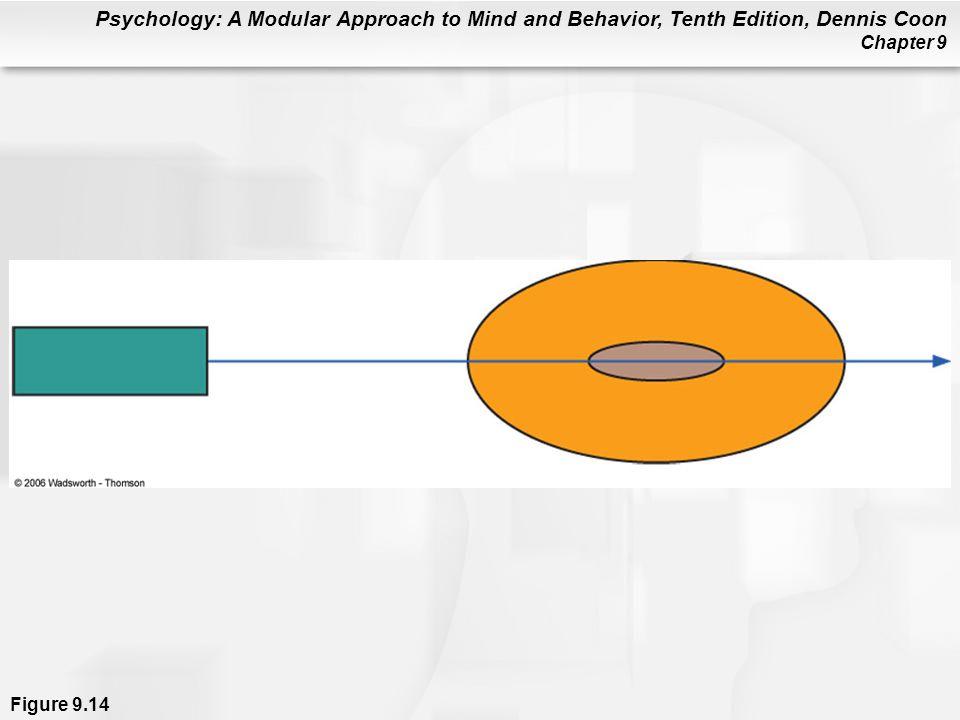 Figure 9. 14 A schematic representation of Duncker's tumor problem