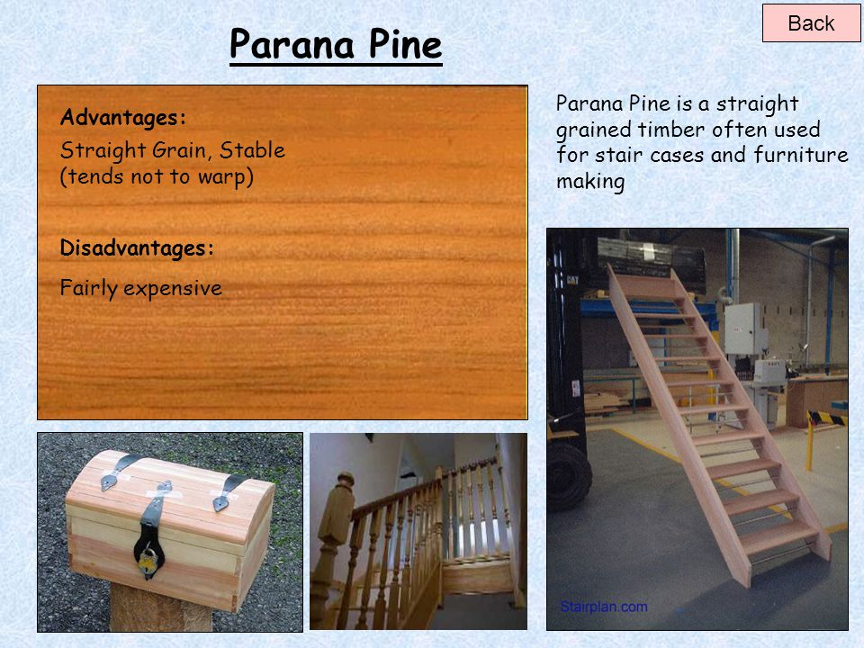 Back Parana Pine. Parana Pine is a straight grained timber often used for stair cases and furniture making.
