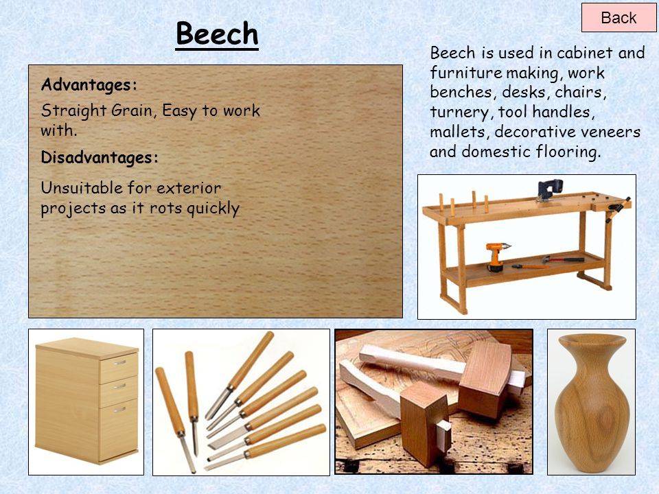 Back Beech. Beech is used in cabinet and furniture making, work benches, desks, chairs,