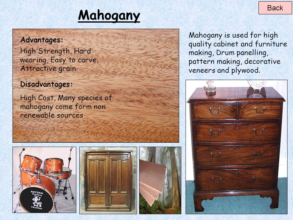 Back Mahogany. Mahogany is used for high quality cabinet and furniture making, Drum panelling, pattern making, decorative veneers and plywood.