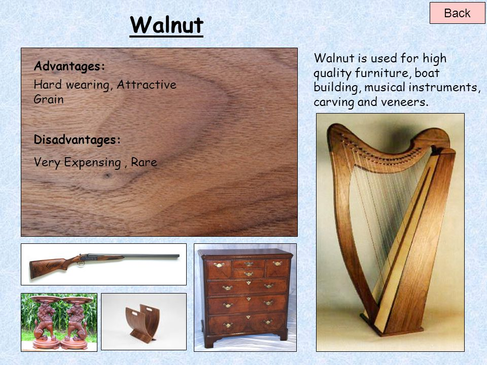 Back Walnut. Walnut is used for high quality furniture, boat building, musical instruments, carving and veneers.