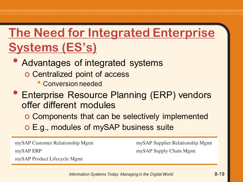 The Need for Integrated Enterprise Systems (ES's)