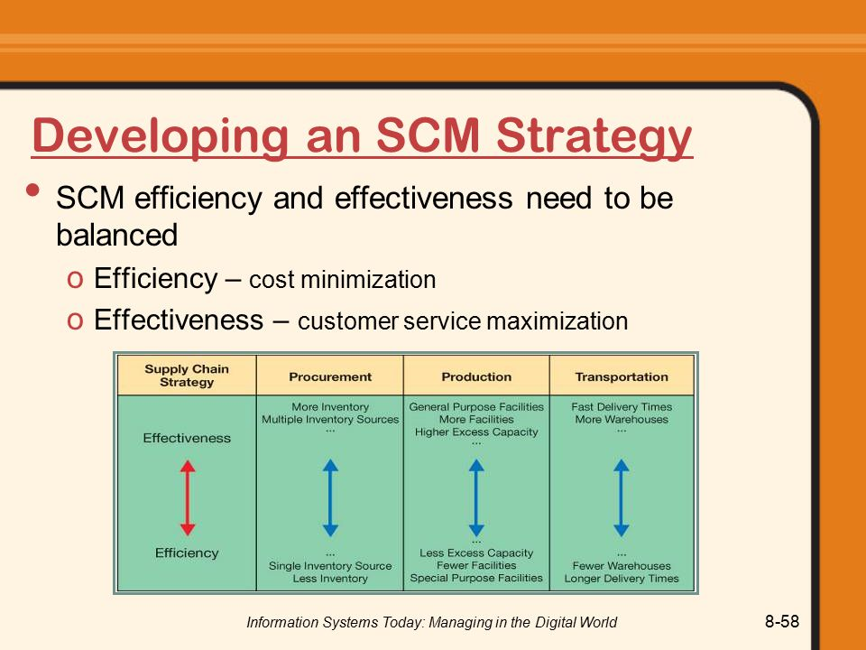 Developing an SCM Strategy