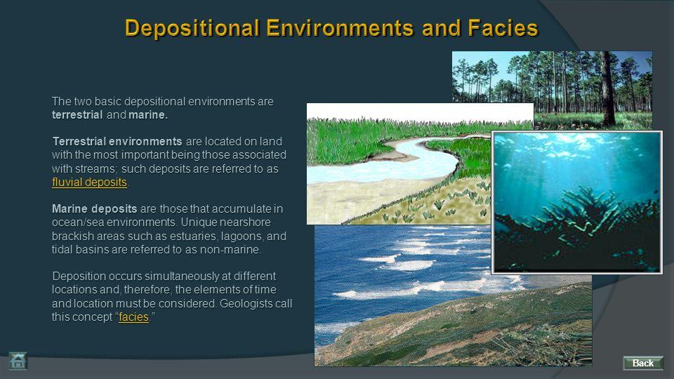 Depositional Environments and Facies