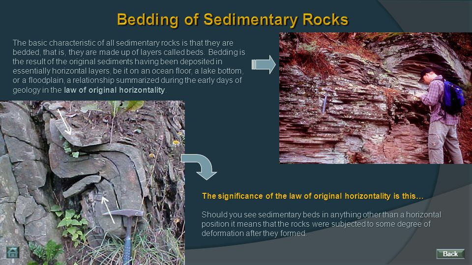 Bedding of Sedimentary Rocks