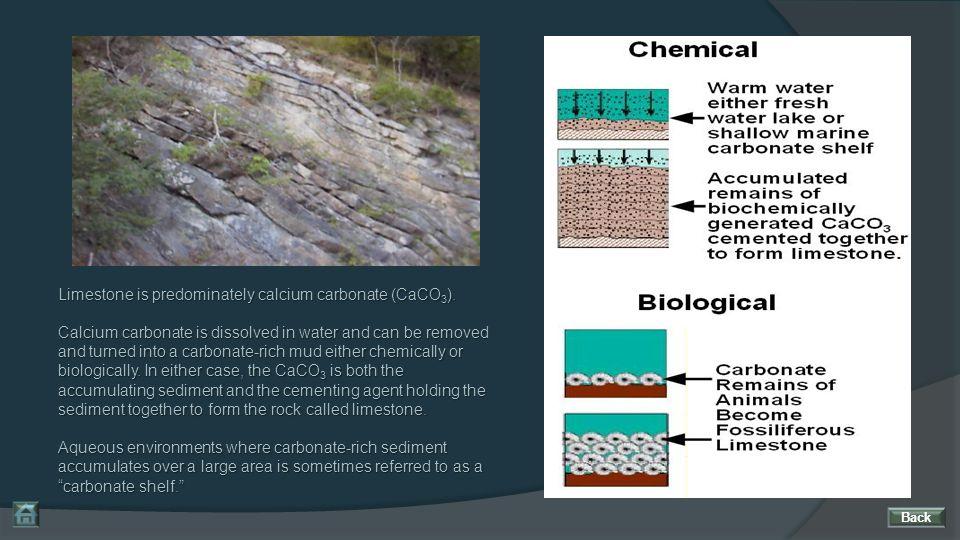 Limestone is predominately calcium carbonate (CaCO3).