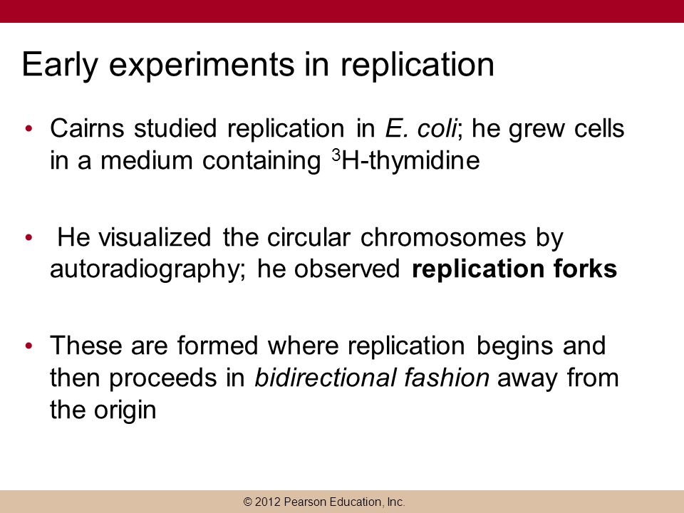 Early experiments in replication