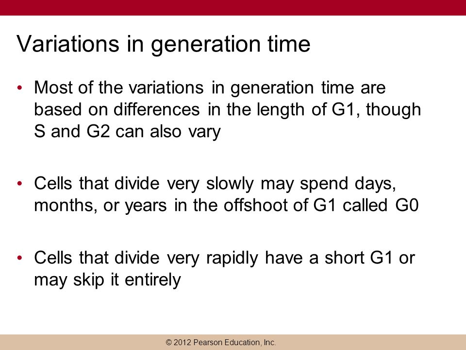 Variations in generation time
