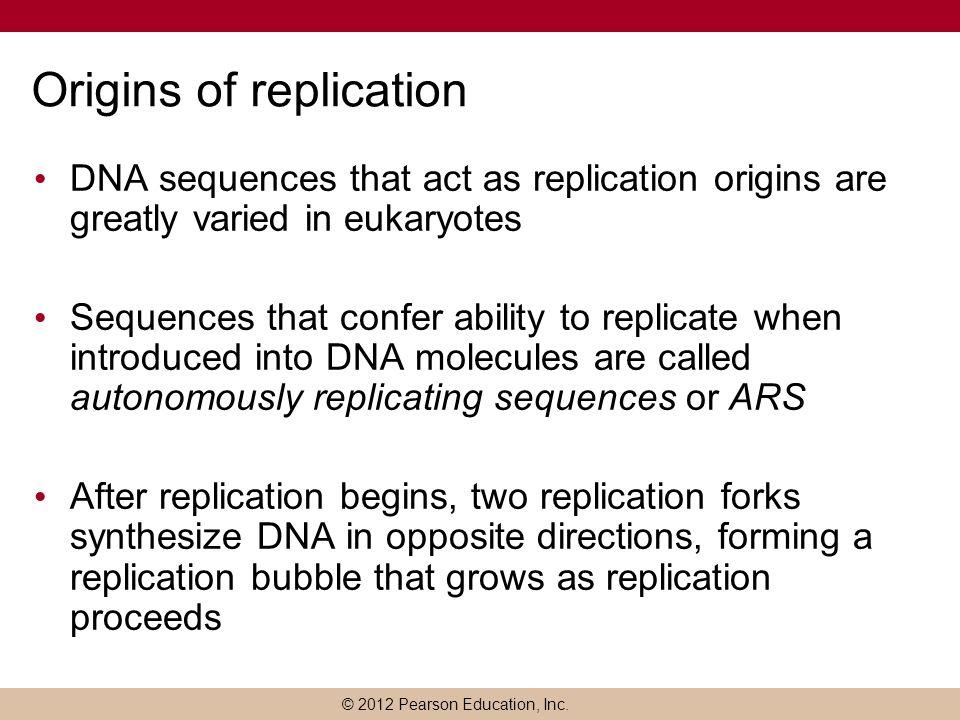 Origins of replication