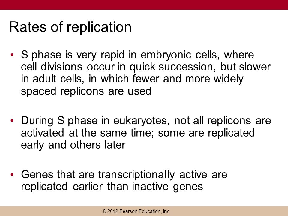 Rates of replication