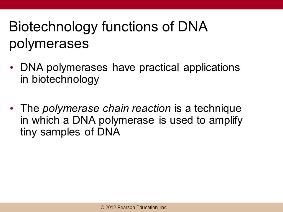 Biotechnology functions of DNA polymerases