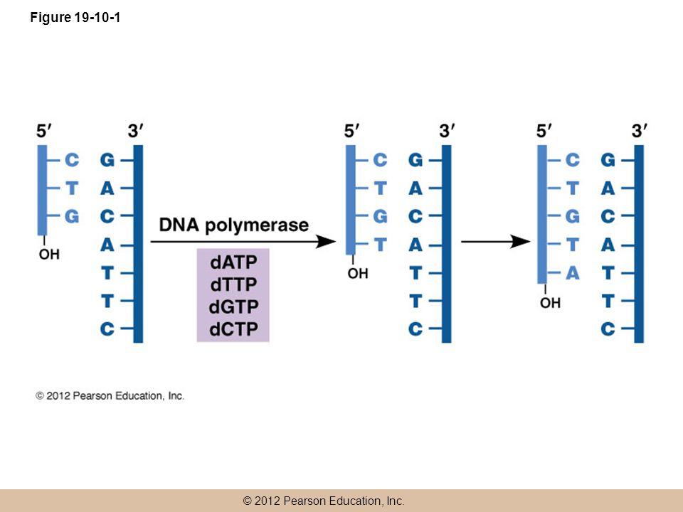 Figure 19-10-1