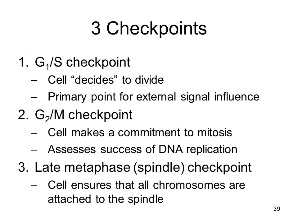 3 Checkpoints G1/S checkpoint G2/M checkpoint