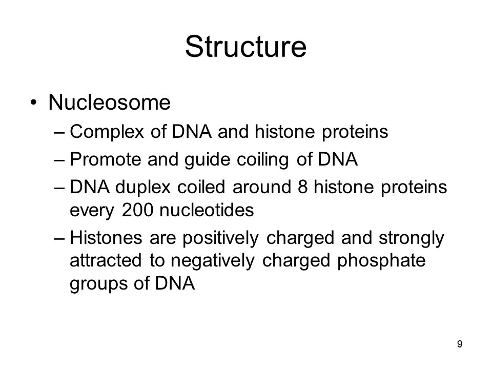 Structure Nucleosome Complex of DNA and histone proteins