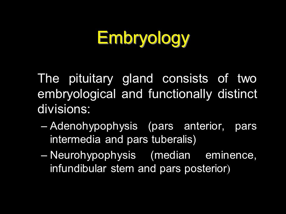 Embryology The pituitary gland consists of two embryological and functionally distinct divisions:
