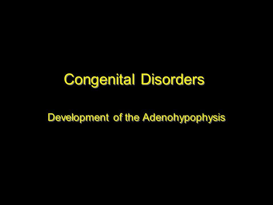 Congenital Disorders Development of the Adenohypophysis