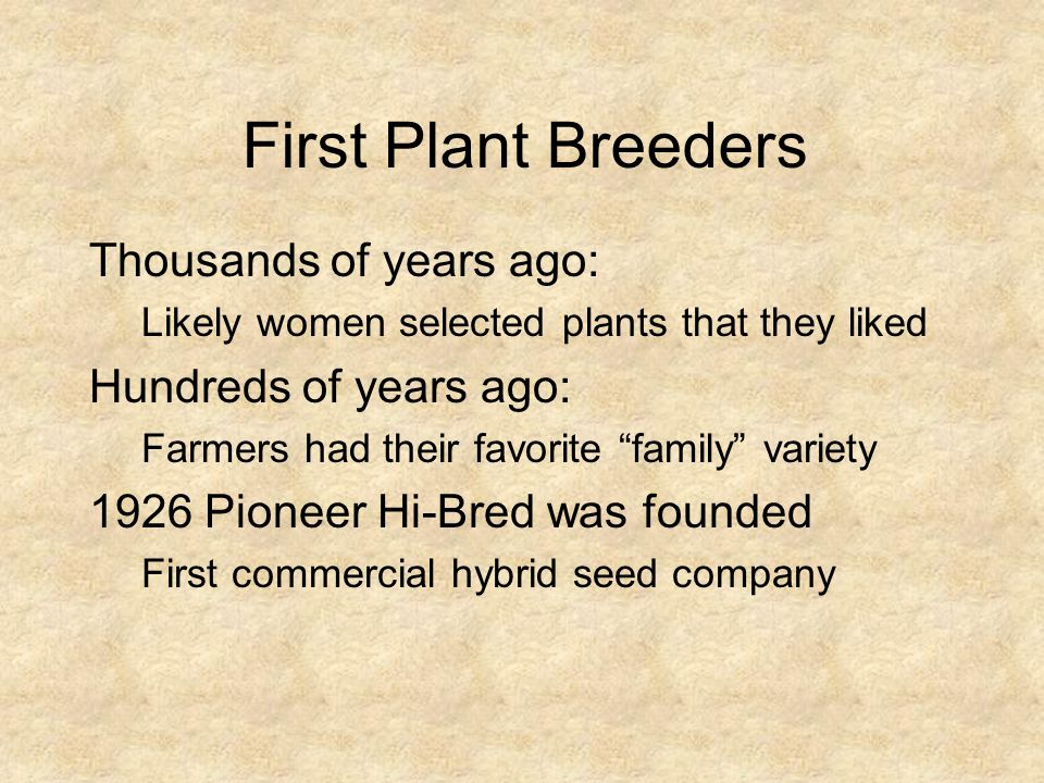 First Plant Breeders Thousands of years ago: Hundreds of years ago: