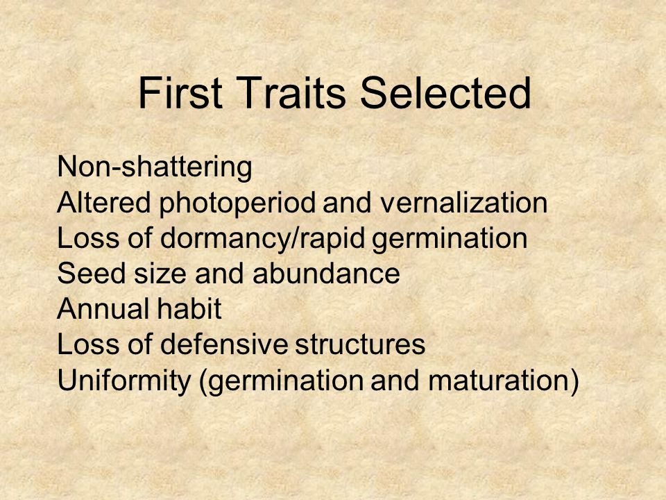 First Traits Selected