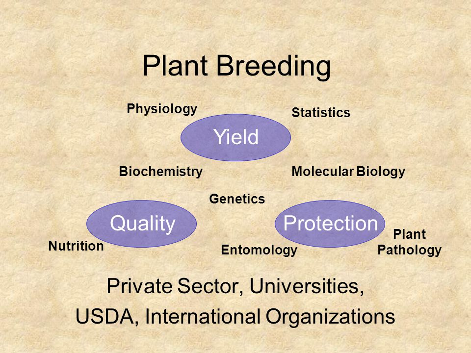 Plant Breeding Yield Quality Protection Private Sector, Universities,