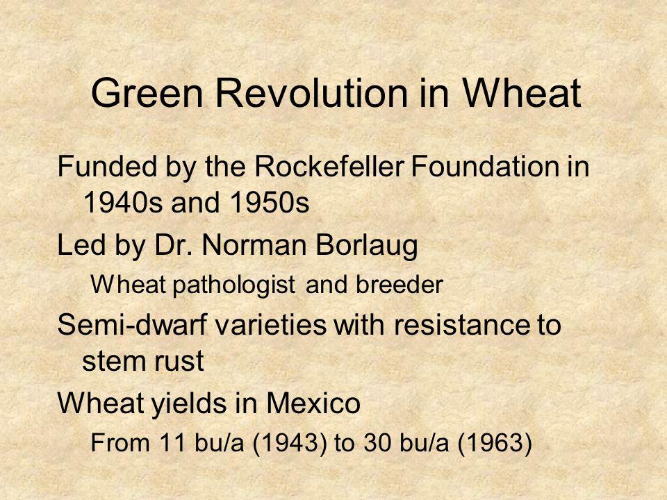 Green Revolution in Wheat