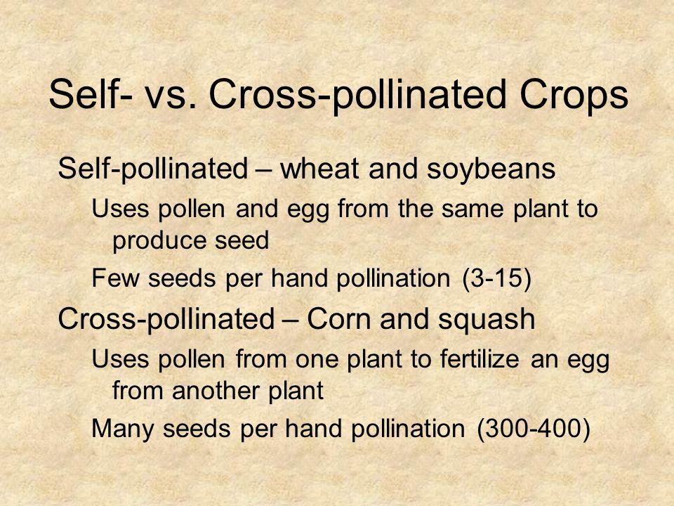 Self- vs. Cross-pollinated Crops