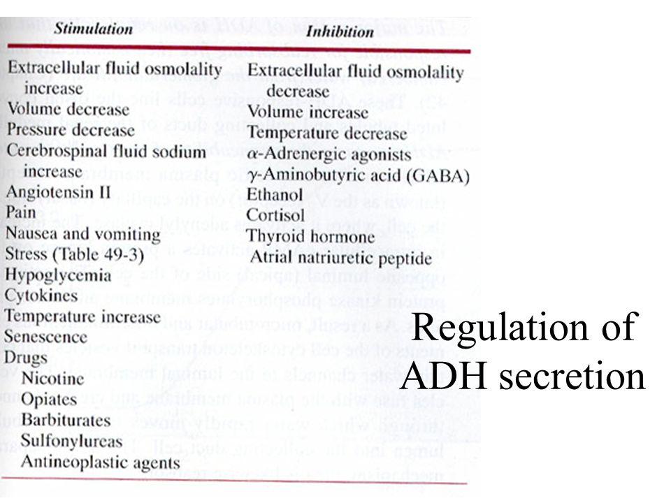 Regulation of ADH secretion