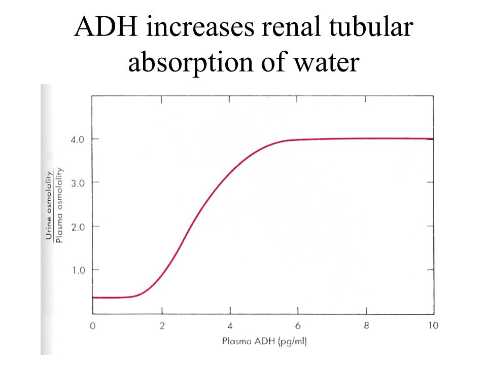 ADH increases renal tubular absorption of water
