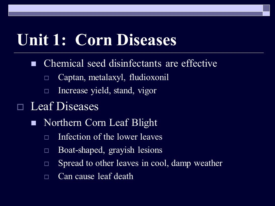 Unit 1: Corn Diseases Leaf Diseases