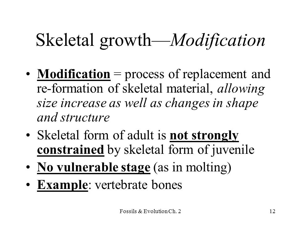 Skeletal growth—Modification