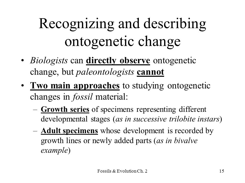 Recognizing and describing ontogenetic change