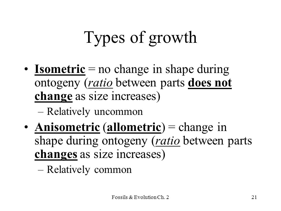 Types of growth Isometric = no change in shape during ontogeny (ratio between parts does not change as size increases)