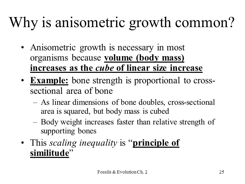 Why is anisometric growth common