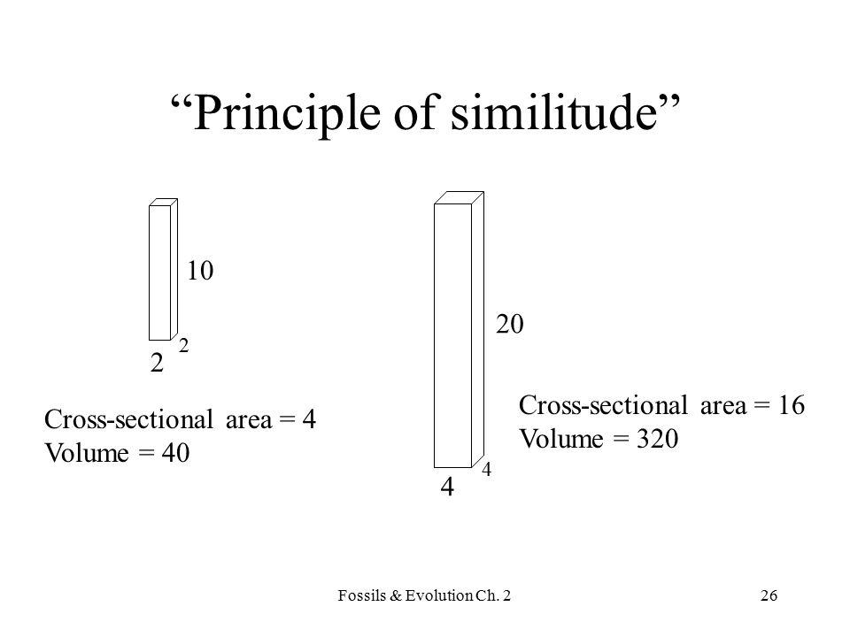 Principle of similitude