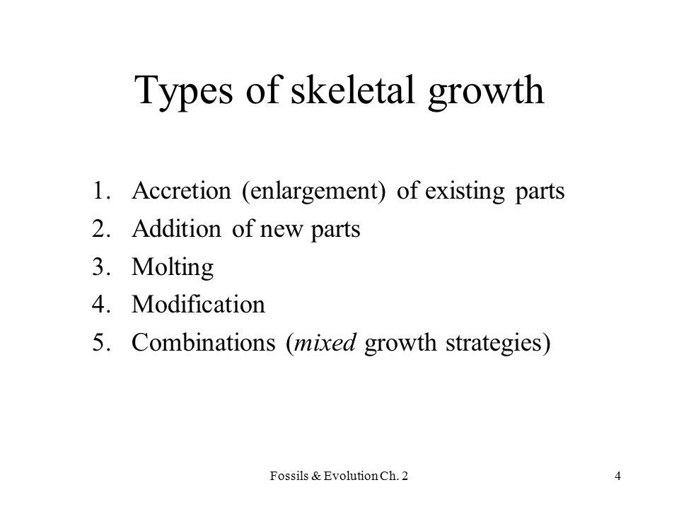 Types of skeletal growth