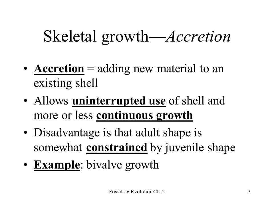 Skeletal growth—Accretion