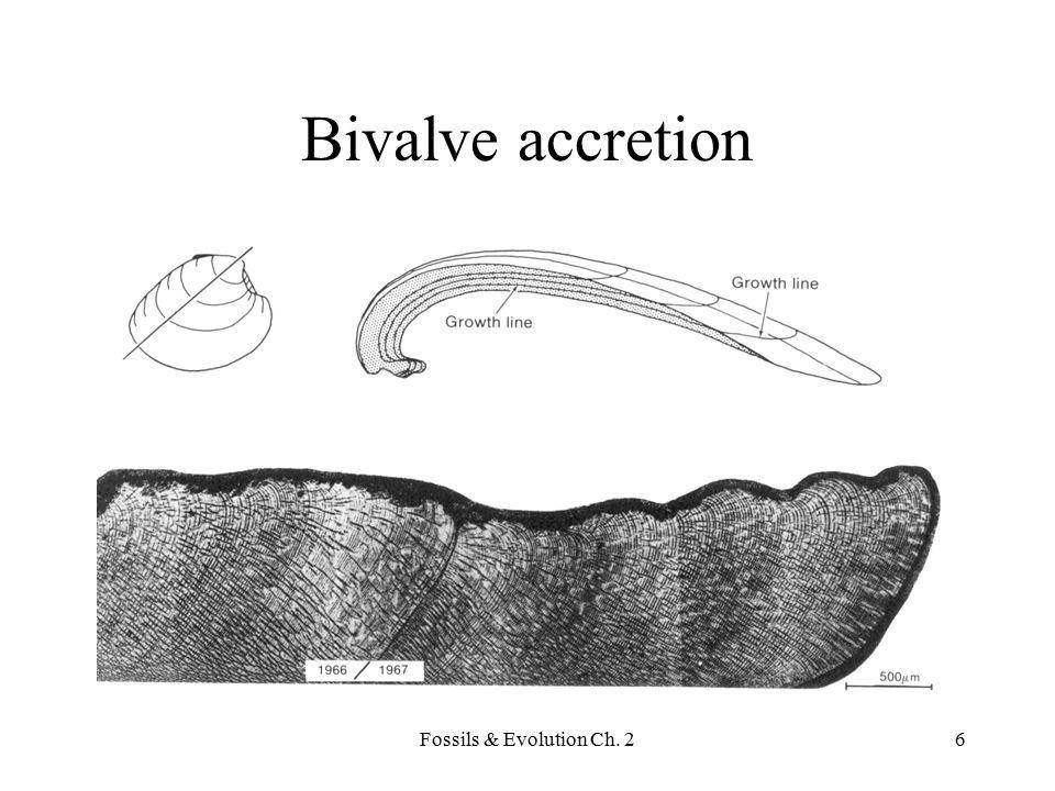 Bivalve accretion Fossils & Evolution Ch. 2