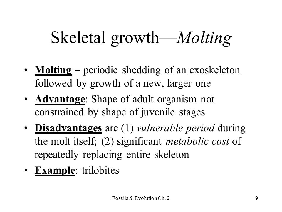 Skeletal growth—Molting