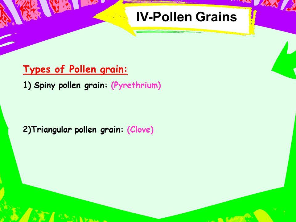 IV-Pollen Grains Types of Pollen grain: