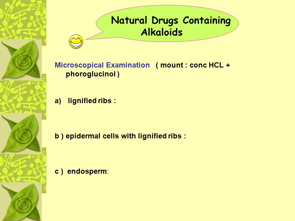 Natural Drugs Containing Alkaloids